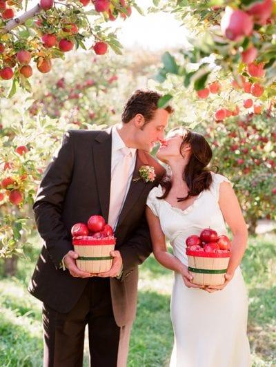 An Apple Orchard Wedding thumbnail