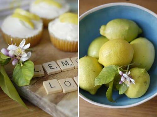 lemon-love-still-life-lemons-in-blue-bowl