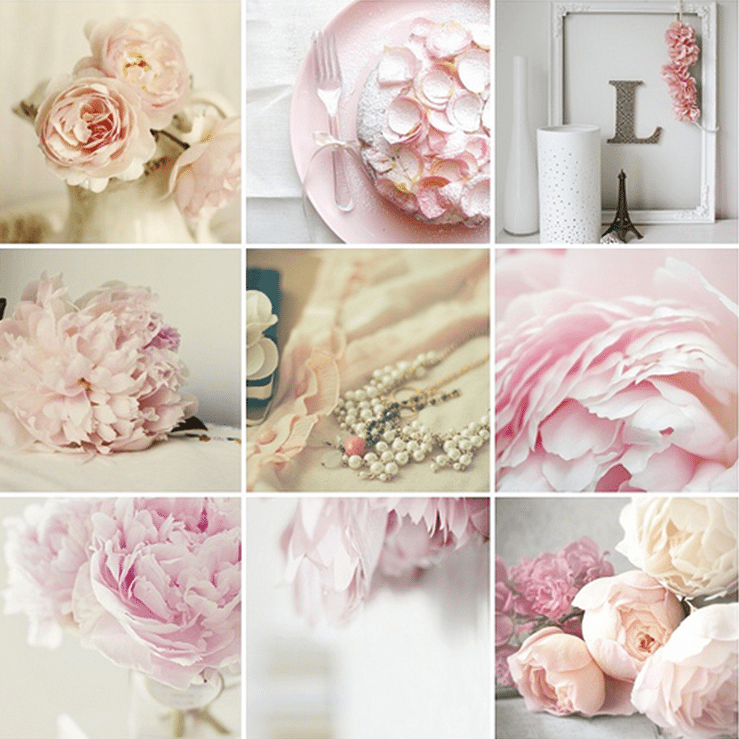 Peony Inspired Wedding Ideas: Uploaded By User