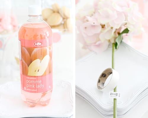 pink-lemonade-wedding-picnic-ideas