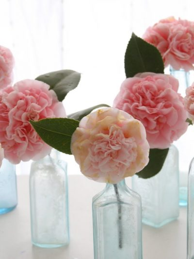 Romantic Pink Blooms thumbnail