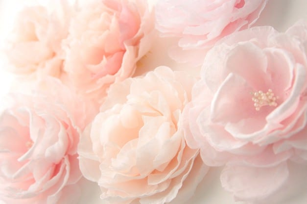Peach Color Palette Inspiration The Sweetest Occasion