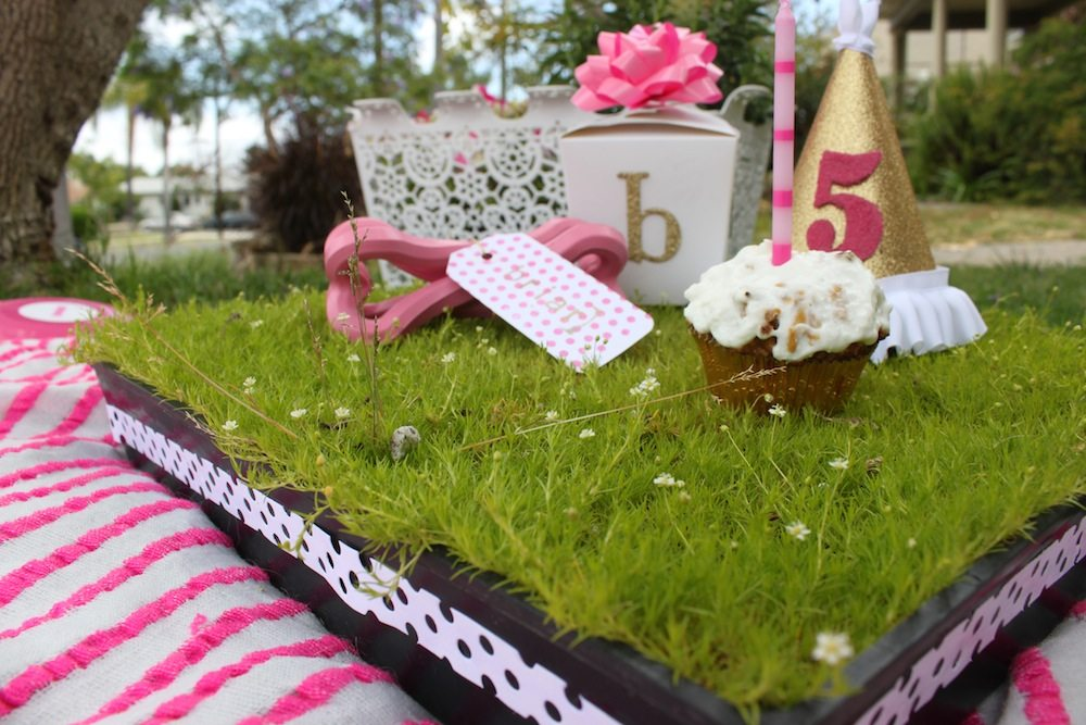 Decorating Ideas > Briar, Lola + Grovers Doggie Birthday Party  The  ~ 211929_Birthday Party Ideas Park