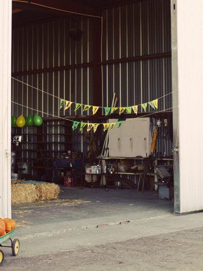 A Tractor Birthday Party thumbnail