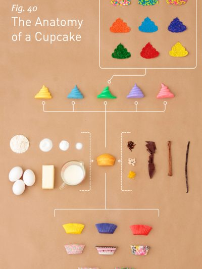 The Anatomy of a Cupcake thumbnail