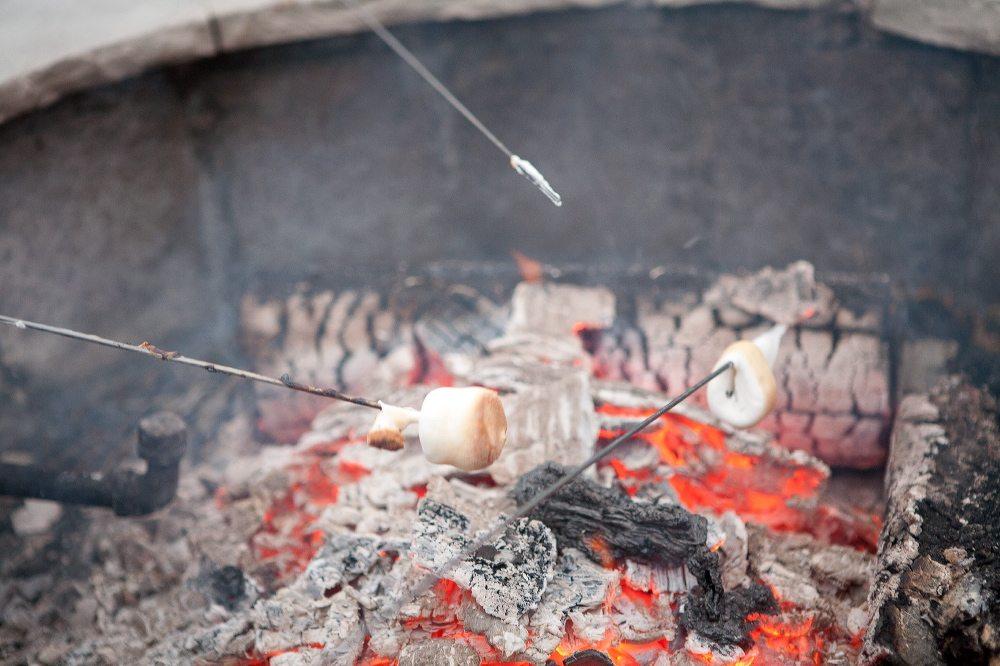 roasting-marshmallows ...