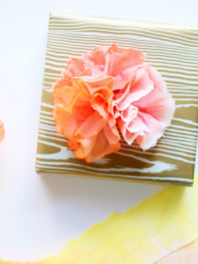 DIY Paper Towel Flowers thumbnail