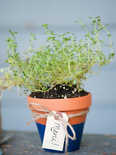 DIY Potted Herb Favors thumbnail