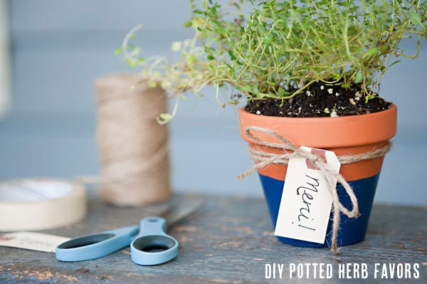 Diy Potted Herb Favors The Sweetest Occasion