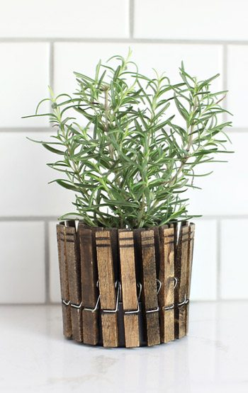 DIY Clothespin Planter