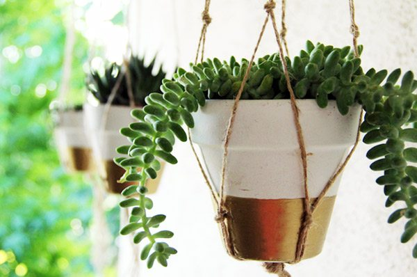 DIY Gold Dipped Planter