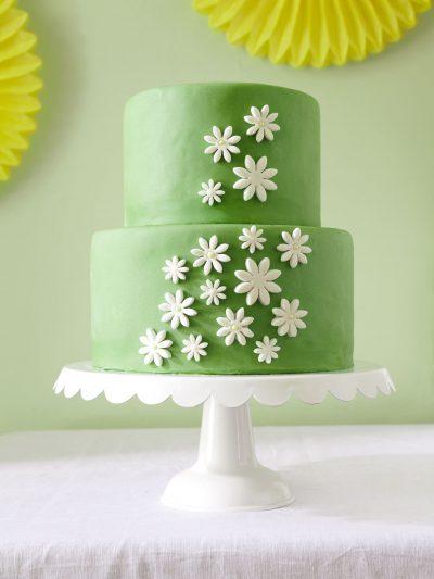 A Daisy Spring Bridal Shower thumbnail