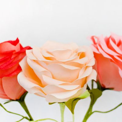 Loving Paper Flowers for Mom thumbnail