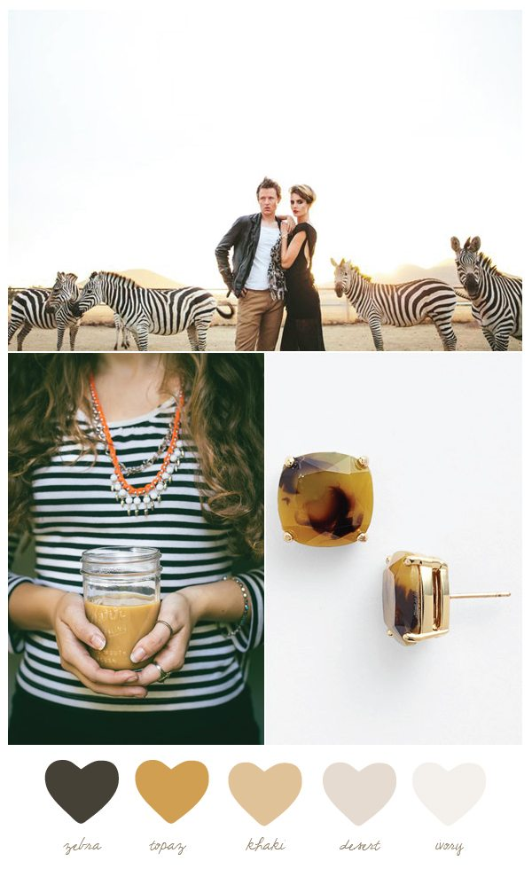Topaz and Zebra Color Palette | The Sweetest Occasion