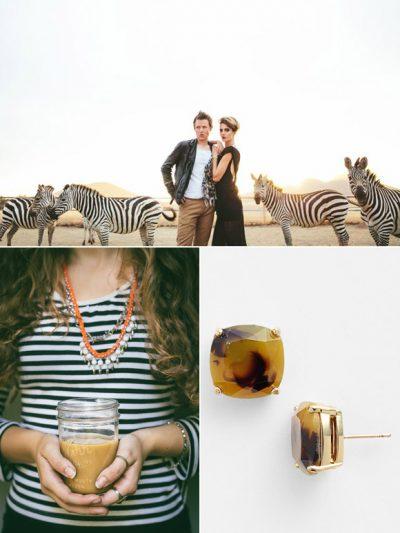 Color Palette: Zebra + Topaz thumbnail