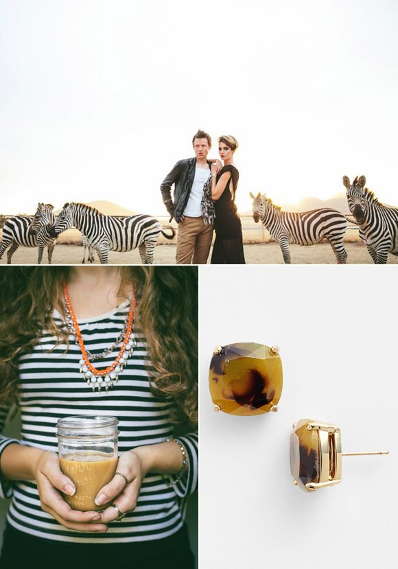 Topaz and Zebra Color Palette   The Sweetest Occasion