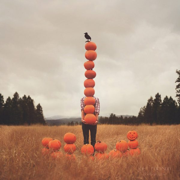 Pumpkin Patch | Photo by Joel Robison