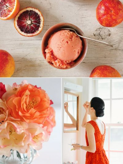 Color Palette: Blood Orange + Persimmon thumbnail