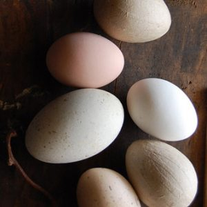 DIY Natural Dyed Easter Eggs thumbnail