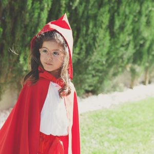 A Little Red Riding Hood Birthday Party thumbnail