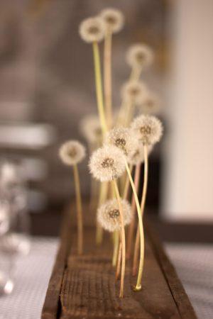 Dandelion Centerpiece