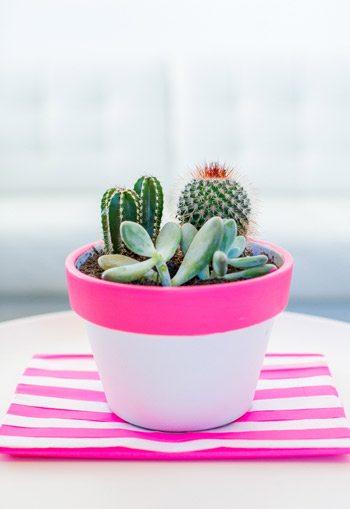 DIY Neon Pink Planter
