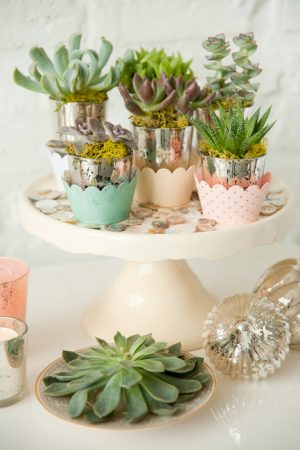 Succulent Centerpiece from @cydconverse
