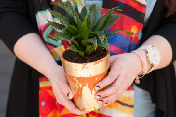 DIY Gold Leaf Planters by @cydconverse