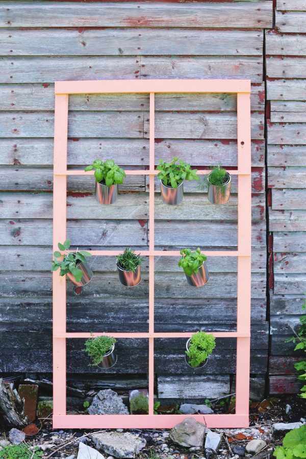 DIY Trellis Herb Garden by @cydconverse for @valsparpaint