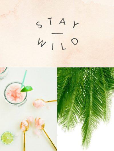 Color Palette: Granita + Palm Tree thumbnail