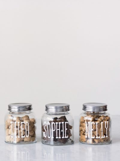 DIY Dog Treat Jars thumbnail