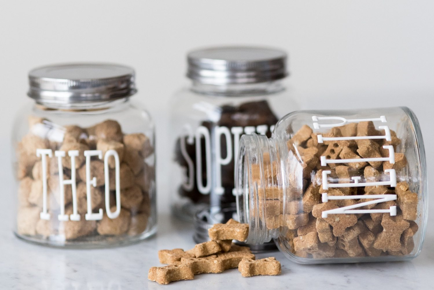 diy dog treat jars   the sweetest occasion