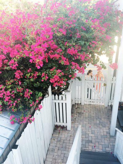 A Weekend in Key West thumbnail