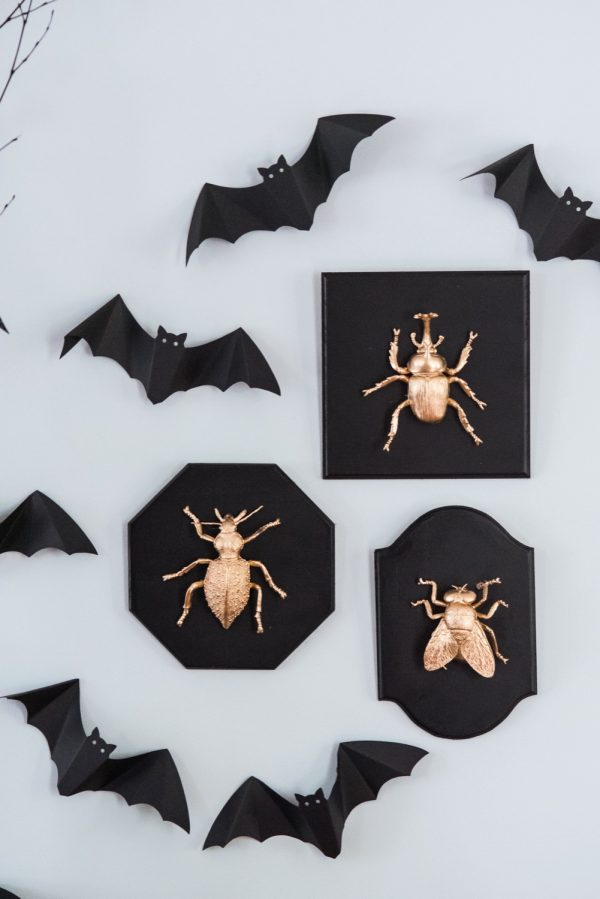 DIY Taxidermy Plaques | Halloween ideas, Halloween decorations and Halloween party ideas from @cydconverse