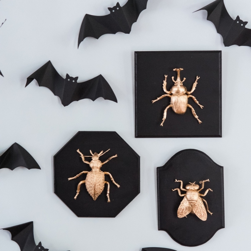 DIY Golden Insect Taxidermy Plaques
