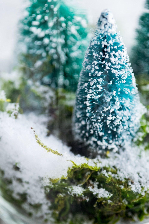 Diy Terrarium Winter Scene The Sweetest Occasion