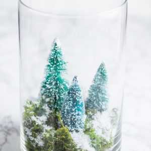 DIY Terrarium Winter Scene thumbnail