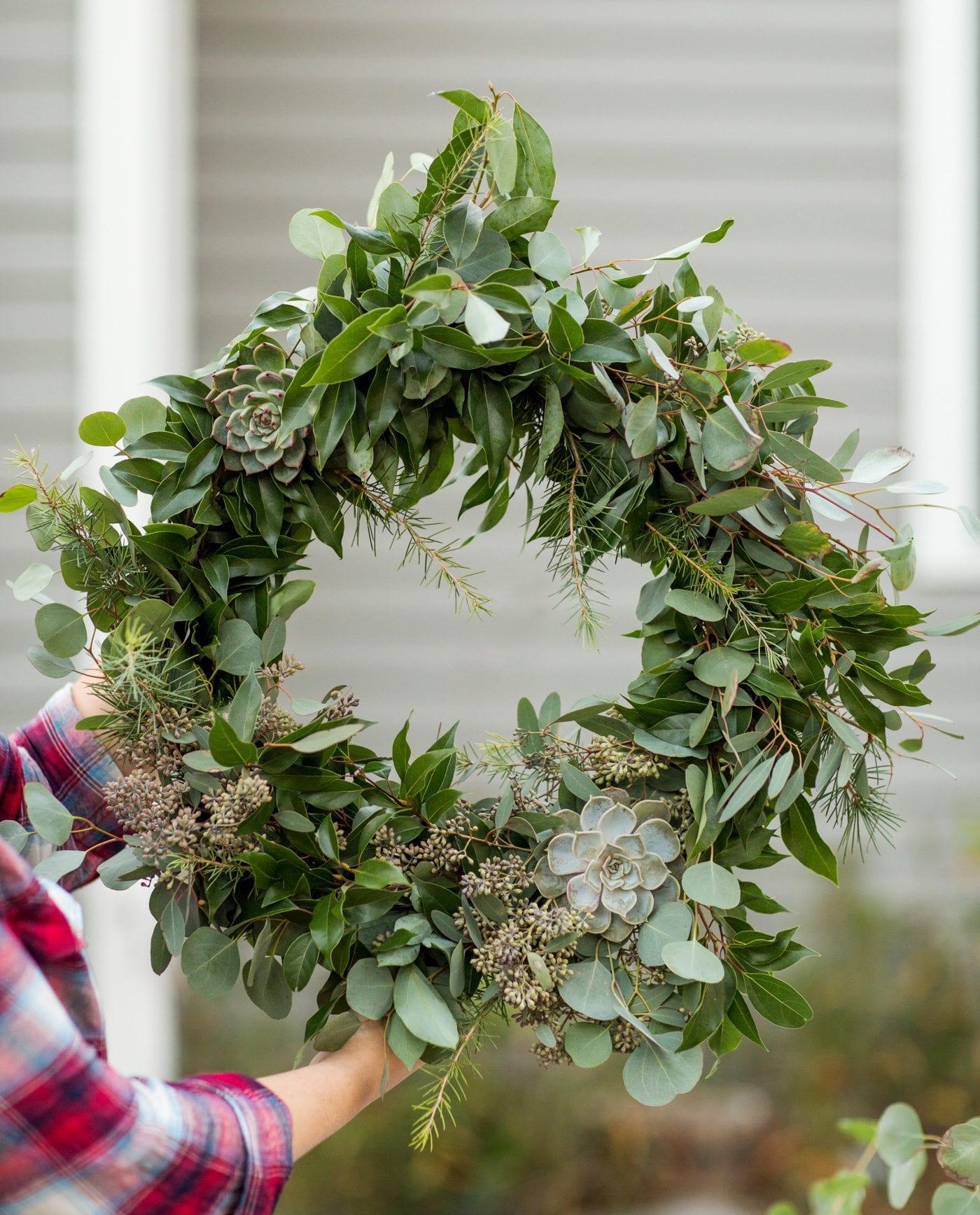 DIY Eucalyptus + Pine Christmas Wreath