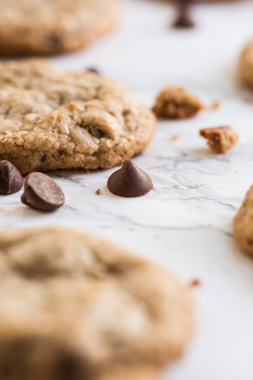 Best Ever Oatmeal Chocolate Chip Cookies - The Sweetest Occasion