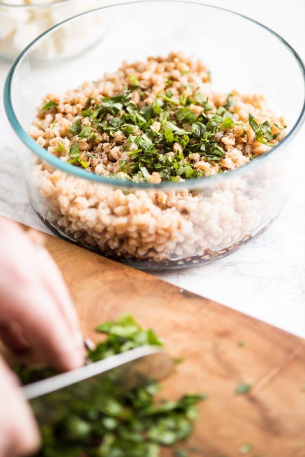 Tomato + Farro Mozzarella Salad Recipe   Healthy vegetarian recipes, weeknight dinner ideas and more from @cydconverse
