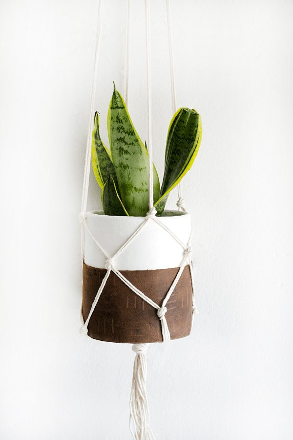 DIY Hanging Planters | DIY ideas, spring craft ideas, first day of spring ideas and more from @cydconverse
