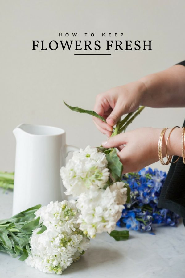 How do flowers last how to keep flowers fresh for longer the sweetest occasion - Ways to make your flowers last longer ...
