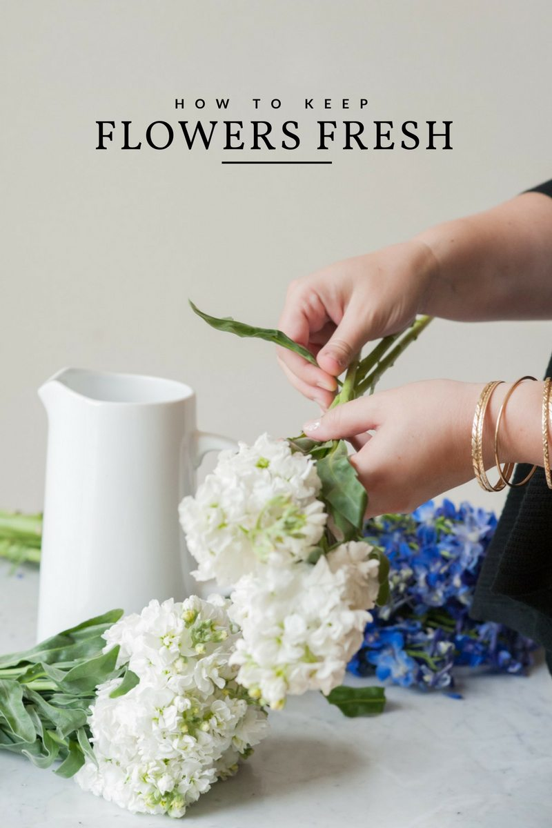 How to Keep Flowers Fresh for Longer - The Sweetest Occasion