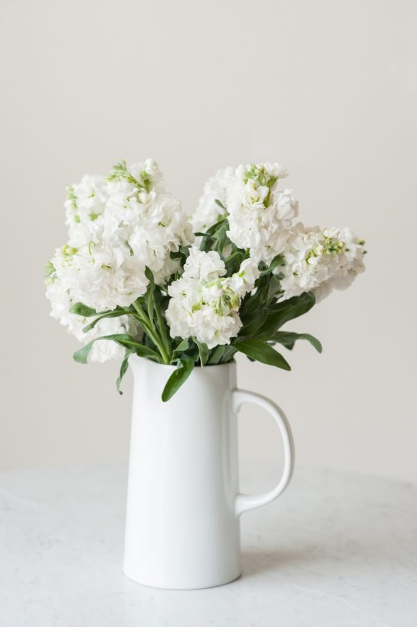 How to Keep Flowers Fresh | Tips for keeping cut flowers fresh longer plus entertaining tips, recipes, party ideas and more from @cydconverse