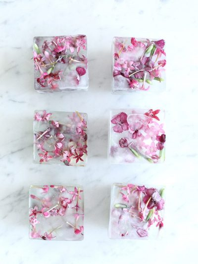 10 Unexpectedly Refreshing Ways to Dress Up Your Ice Cubes for Summer thumbnail