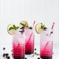 Make Mine a Blueberry Mojito