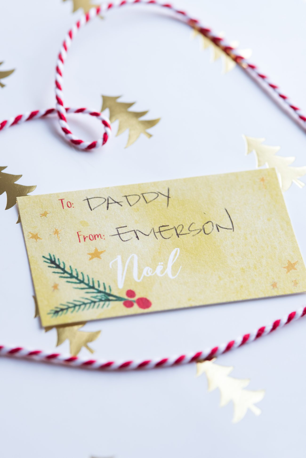 pretty hand painted printable holiday gift tags the sweetest occasion