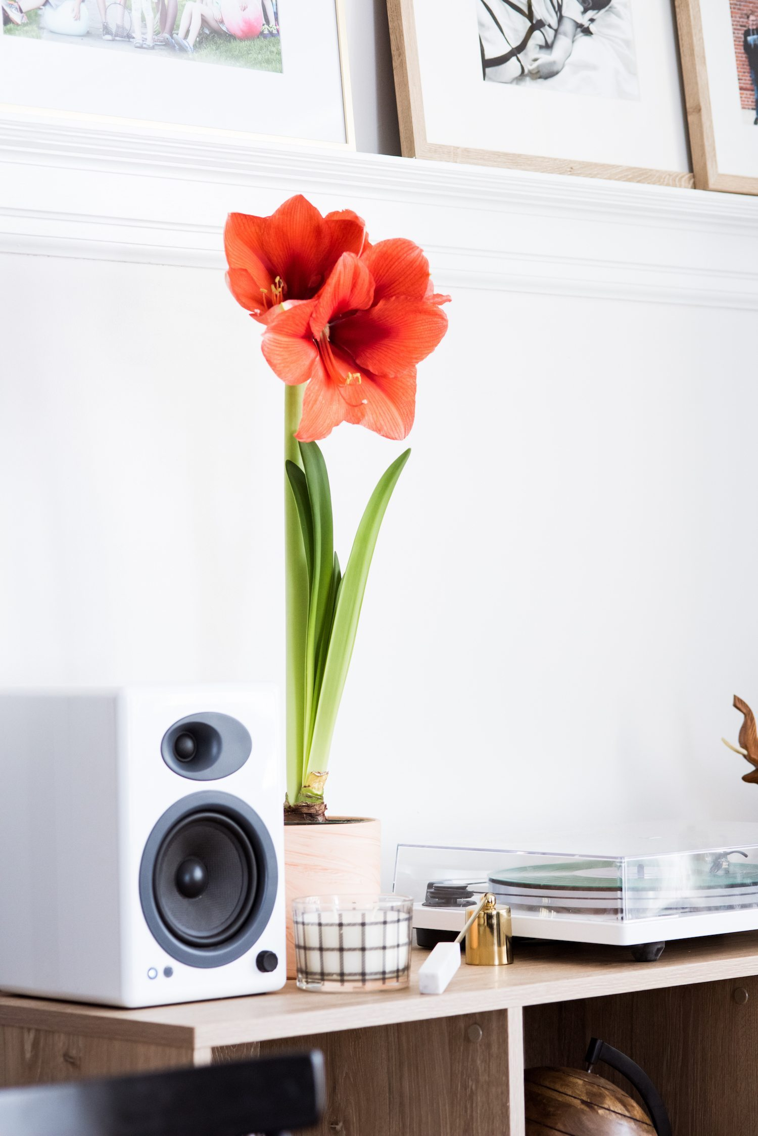 U-Turn Audio Orbit Review | Home decor ideas, entertaining tips, party ideas, party recipes and more from @cydconverse