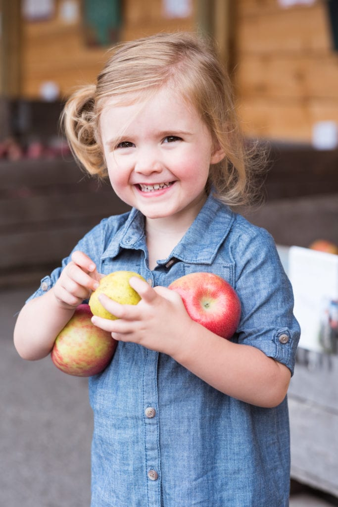 New York State Apple Picking   Visiting the Burrville Cider Mill   Where to go in New York for fall foliage from entertaining blog @cydconverse