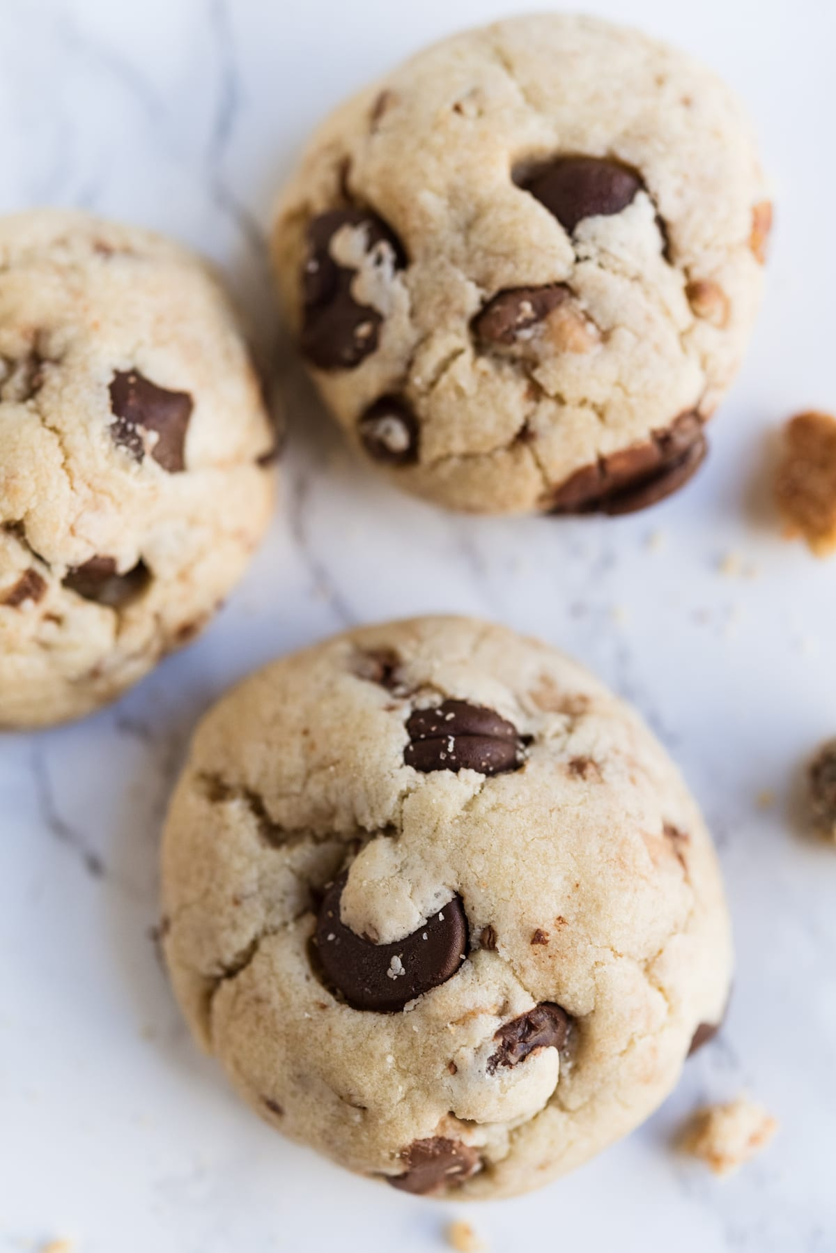 Dark Chocolate Chip Toffee Cookies with Pecans   Best Christmas cookie recipes, Christmas party ideas, and Christmas cocktail recipes from entertaining blog @cydconverse